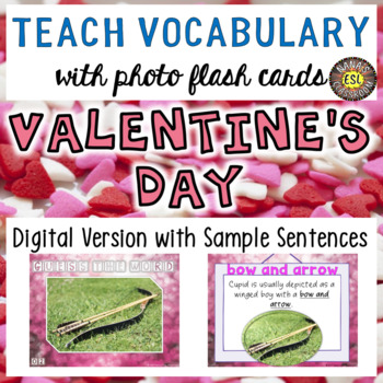 Valentine's Day Digital Photo Flash Cards with Sample Sentences