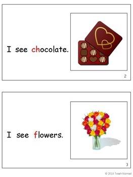 Valentine's Day Level A Reader