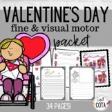 Valentine's Day Fine & Visual Motor Packet
