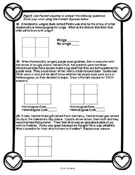 Valentine's Day Science Worksheet - Genetics -Punnett Squares Genotype Phenotype