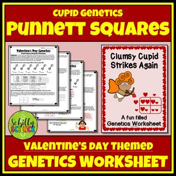 Valentines Day Science Worksheet Genetics Punnett Squares