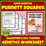 Valentine's Day Punnett Square Worksheet - Cupid Genetics