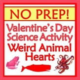 Valentines Day SCIENCE Activity Compare Weird Animal Hearts NO PREP