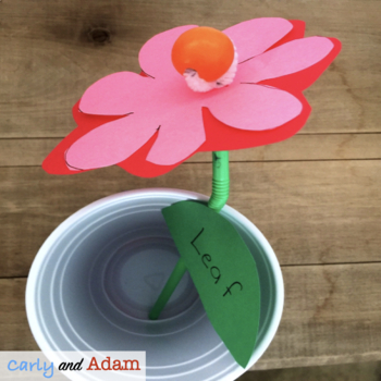 Valentine's Day STEM Activity: Valentine Flower Design