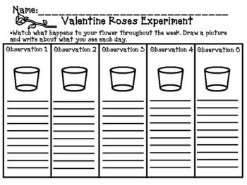 Valentine's Day Science Experiment 5 Pack
