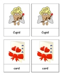 Valentine's Day Thematic Word/Picture Vocabulary Cards