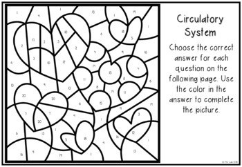 Valentine's Day Themed Science Color-by-Number: Circulatory System