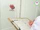 Valentine's Day Writing Center Activities