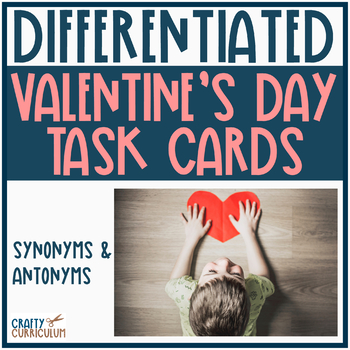 Synonyms and Antonyms Sort ~ Differentiated Levels
