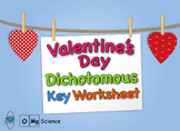 Valentines Day Dichotomous Key Worksheet