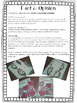 Valentine's Day Fact & Opinion Interactive Notebook/Center Activity