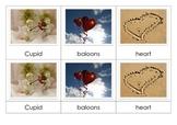 Valentine's Day - Montessori Nomenclature Cards