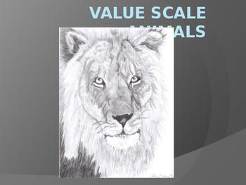 Value Animals