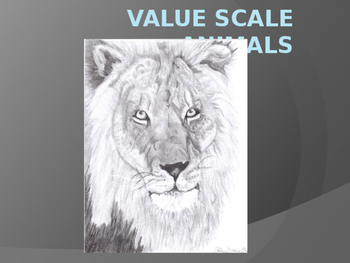 Value Animals