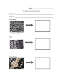 Value and Texture Drawing Worksheet