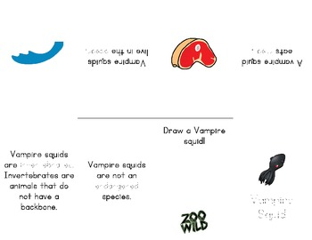 Vampire Squid -- 10 Resources -- Coloring Pages, Reading & Activities