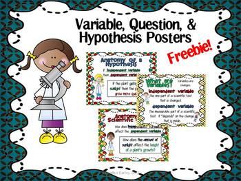 Variable, Question, and Hypothesis Posters for Scientific Process Freebie!