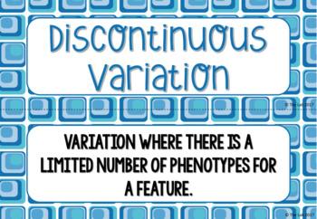 Variation Vocabulary Card Sort