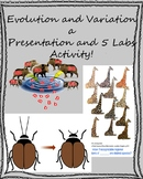 Evolution and Variation Presentation with 5 Lab Activities!
