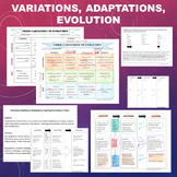 Variations, Adaptations, and Evolution Charts