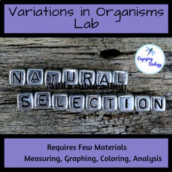 Variations in Organisms Lab