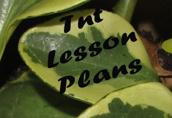 Variegation in a Leaf