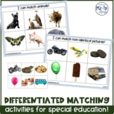 Variety of Differentiated Matching Activities for Special