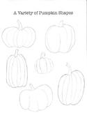 Variety of Pumpkin Shapes