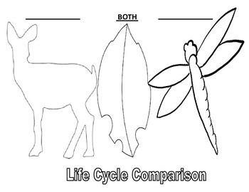 Various Life Cycle Venn Diagrams in shape of animal/plant (blank)