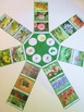 Various Plants of the continents Montessori cards