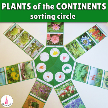 Plants of the continents cards
