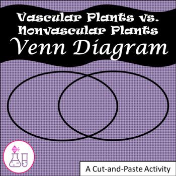 Vascular Plants vs. Nonvascular Plants Venn Diagram