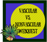 Vascular vs. Nonvascular Plants Webquest and Celery Experiment