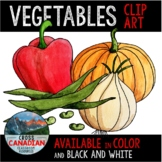 Vegetable Clip Art- Hand Painted Watercolor Food Images!