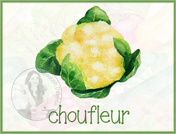 Vegetable Flash Cards - French - Set of 19 - Les Legumes