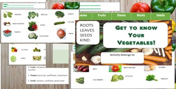 Vegetable Introduction