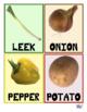Vegetables   Légumes FLASH Cards