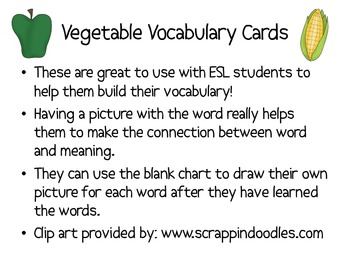 Vegetable Picture Cards for  Vocabulary--ESL