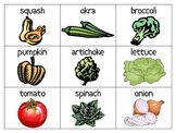 Vegetable Picture Vocabulary Cards---ESL