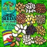 Vegetable Seeds & Seedlings Clip Art