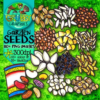 Vegetable Seeds, Seedlings, Plants & Garden Tools Clip Art BUNDLE