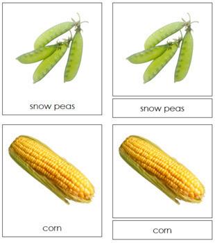 Vegetables: 3-Part Cards