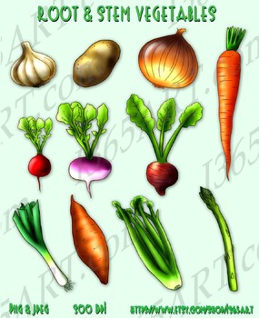 Vegetables Group Clipart 11 Pack Digital Graphics