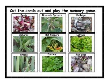 Vegetables Growing Memory Game
