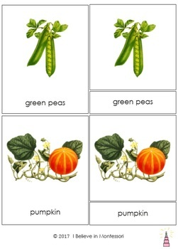 Vegetables Montessori 3-part Cards