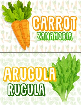 Vegetables In English And Spanish By Mistercervantes Tpt See the translation of zanahoria with audio pronunciation, conjugations, and related words. vegetables in english and spanish