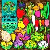 Vegetables & their Plants Clip Art
