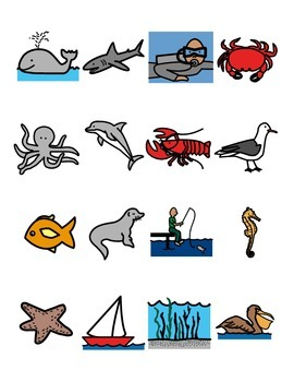 Velcro Vocabulary Match Boards (careers, animals and sea creatures)