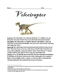 Velociraptor - Raptor Dinosaur informational article facts lesson questions