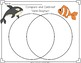 Venn Diagram : Compare and Contrast Activities